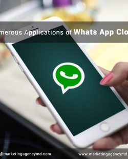 Numerous Applications of Whats App Clone